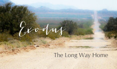 Exodus: The Long Way Home