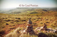 All the Good Promises: Walking in the Certainty of God's Faithfulness [Joshua]