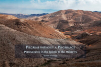 Pilgrims without a Pilgrimage: Perseverance in the Epistle to the Hebrews